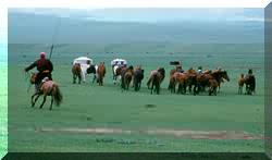 Click for pictures of Mongolia