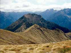 See photos of New Zealand